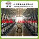 黑龙江/山东阿菲金并列式挤奶机厂家价格/制造商/供货商