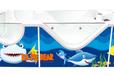 廣東嬰幼兒游泳館的加盟品牌