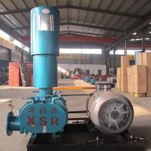 大量批发高压水冷罗茨鼓风机水产养殖增氧机高效节能热卖
