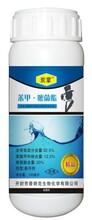 安徽亳州炭疽病靶斑病特效杀菌剂生产批发厂家