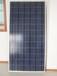 山东太阳能电池板厂家,供应10-300W太阳能电池板,太阳能电池板寿命,分布式并网5KW-50MW系统
