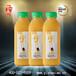 正品希之源一榨鲜谷物粗粮饮料健康养生饮料批发玉米汁饮料428g15