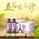 五谷粗粮饮料代理一榨鲜生产厂家直销瓶装饮料300g果汁饮料整箱