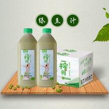 诚招代理营养绿豆饮料系列健康湖北绿豆饮料一榨鲜