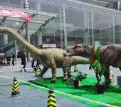 鹤壁展示展览庆典活动仿真恐龙军事模型飞机坦克租赁