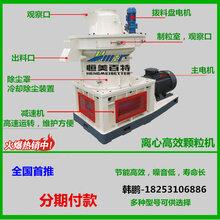 现货供应木屑颗粒机成套生产线价格大型燃料颗粒机