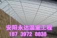 信阳专业建造土坑温室厂家温室大棚制作费用安阳永达