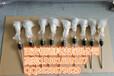 优惠价格供应西安咸阳宝鸡铠装带底座热电阻PT100/WZP