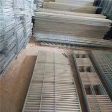 供应广西鸽子笼山东12位鸽笼鸽笼厂家低价批发