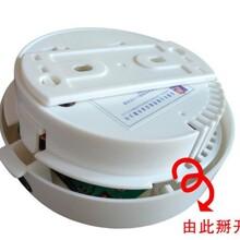 A优质东莞独立烟感器顺德烟感报警器东莞烟感探测器