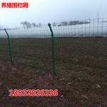 厂区隔离栅框架护栏网高速公路铁路护栏网小区围网图片