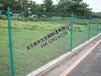 野山鸡场地包塑铁丝围栏养鸡养殖护栏围栏荷兰网