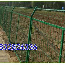 边框护栏网围栏网框架护栏网浸塑双边丝护栏网高速公路护栏网