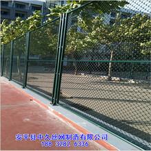 小区球场体育场护栏网勾花包塑网体育场护栏网