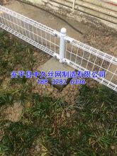 市政护栏网低碳钢丝护栏网双圈围栏网市政远离防护网