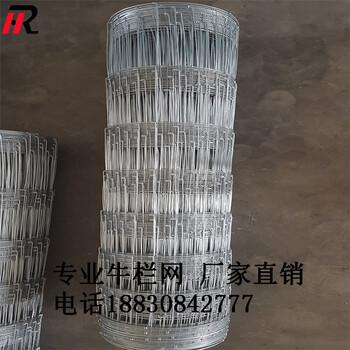 厂家直销养猪网隔离围栏网拧编工艺抗撞耐腐蚀