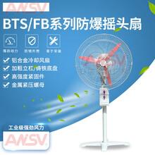 BTS防爆搖頭扇500墻壁安裝落地式BTS-600700工業石油化工廠用圖片