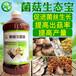 绵阳市种植羊肚菌用的菌菇生态宝增产营养液网上直接订购方法