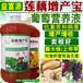 蓮藕專用肥料用啥牌子產量高