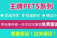 上海公共英语培训近期开班