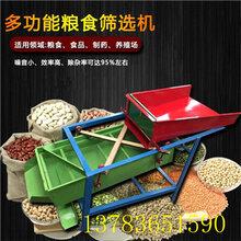 大豆玉米精选机五谷杂粮筛选机设备粮食振动筛小麦精选机图片