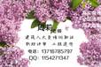 北京顺义低压电工证什么时间考试在哪报名
