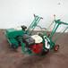 內燃式起草皮機大葉油草馬尼拉草草皮移植機