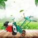 起草皮机定制草皮移植机300宽起草坪机铲草机