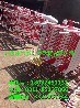 兴宁绝缘围栏/变压器隔离围栏价格/铝反光标识牌
