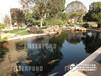 潮州假山魚池過濾器不銹鋼自動反沖洗恒運園林假山魚池建造