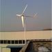 棗莊價格優惠風力發電機小型1千瓦離網風力發電機