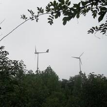 宣城微風啟動低速風力發電機1千瓦離網風力發電機圖片