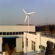 唐縣養殖使用500瓦永磁風力發電機環保新能源圖片