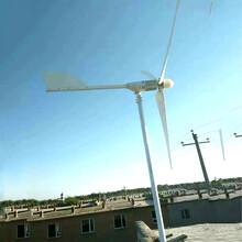 懷仁低震動運行24v風力發電機500瓦微型風力發電機圖片