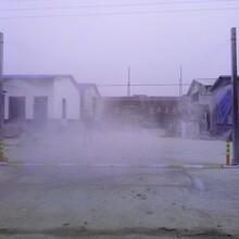 车辆消毒通道喷淋系统养殖场消毒通道专用设备迈安达消毒设备厂家直销