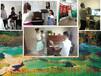 深圳龙岗钢琴培训机构龙城广场钢琴入门学习