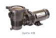 OPTIFLO水泵用于地上型泳池