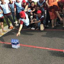 上海崇明长兴岛环岛徒步团队定向拓展活动