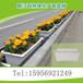 高架桥绿化专用PP塑料花盆家庭阳台窗台种菜大花盆