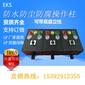 FZC-L-A3B1D2K1L铝合金立式防水防尘防腐操作柱