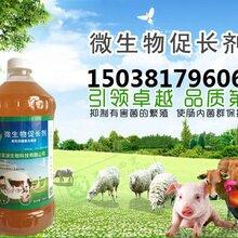 宠物养殖动物饮用营养液益富源微生物促长剂厂家直销图片