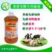 供应鸡粪发酵剂猪粪发酵饲料微生态制剂厂家岳阳佛山