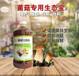 安徽青阳县凤台县益富源菌菇专用菌液使用种植花菇催菇快品质好