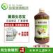 益富源菌菇营养液培育菌菇专用香菇菌棒制作技术