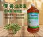 益富源芽苗菜营养液厂家销售湖南花生芽专用怎么购买