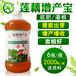 用益富源莲藕增产宝种植莲藕产量高少生病害