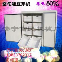 海南文昌新型豆芽机价格不锈钢豆芽机控温技术自动淋水豆芽机