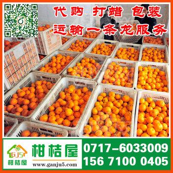 湖北宜昌柑桔屋专业合作社