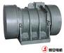 HAN160-6振动电机洗煤机械配件