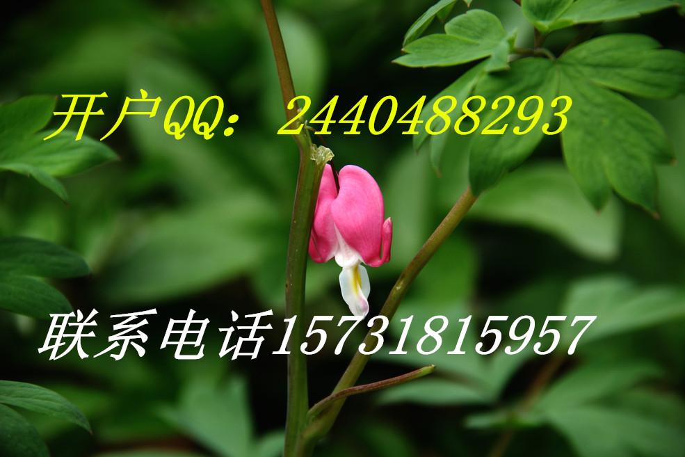 九江市律程商务开户
